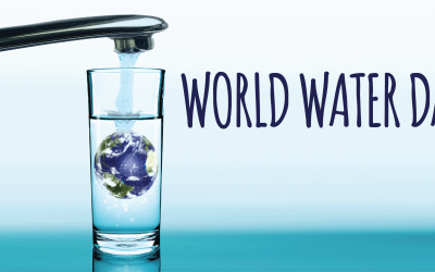 World Water Day, Conservation, and You